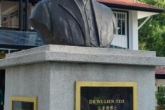 Dr WU Bust